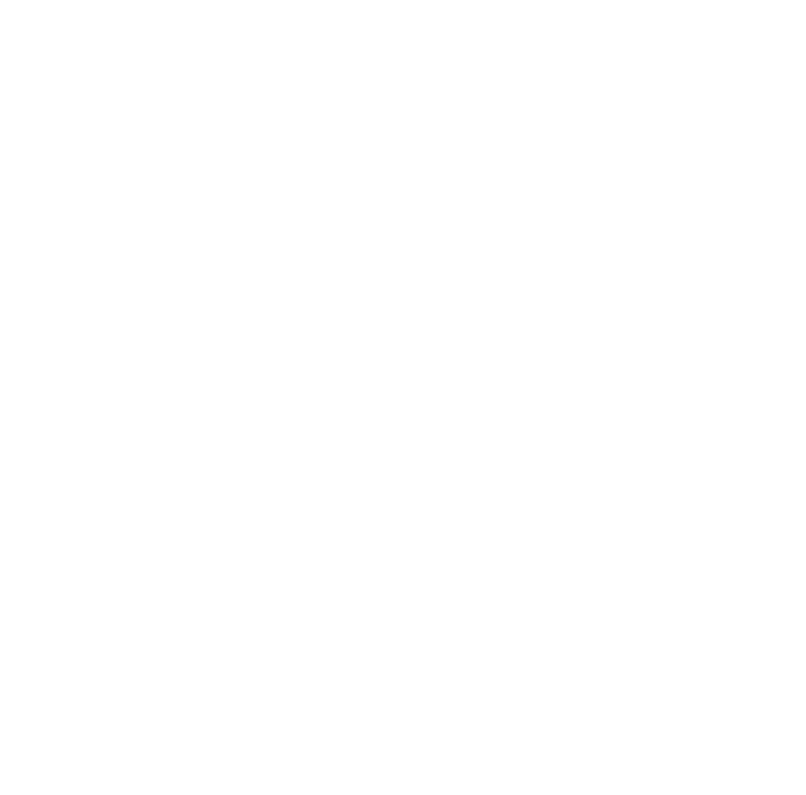 Native Loom Goods logo